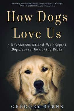 Neuroscience May Confirm What Many Dog Lovers Already Know