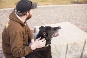 Evidence for the case against formal behavior evaluations for shelter dogs
